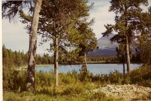 Lake near Camp