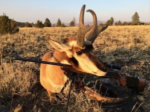Kens Antelope 2014 Int 02