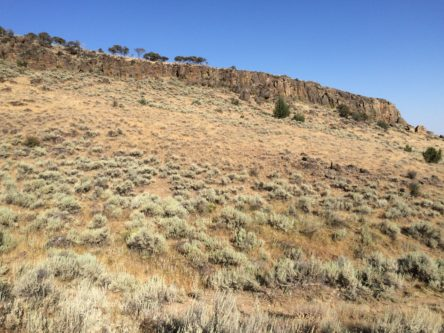 The bluff above my Pronghorn